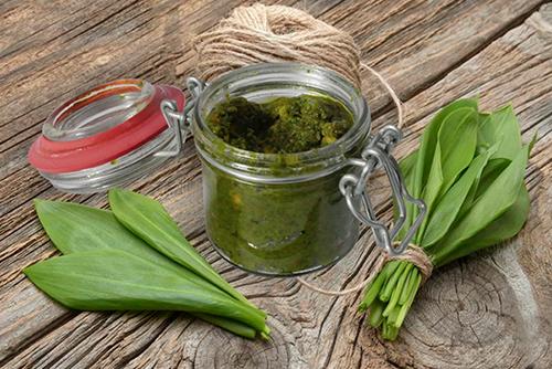 Bärlauchpesto (saisonal erhältlich: März – April)